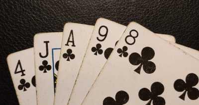 Pokerhubisr Flush win